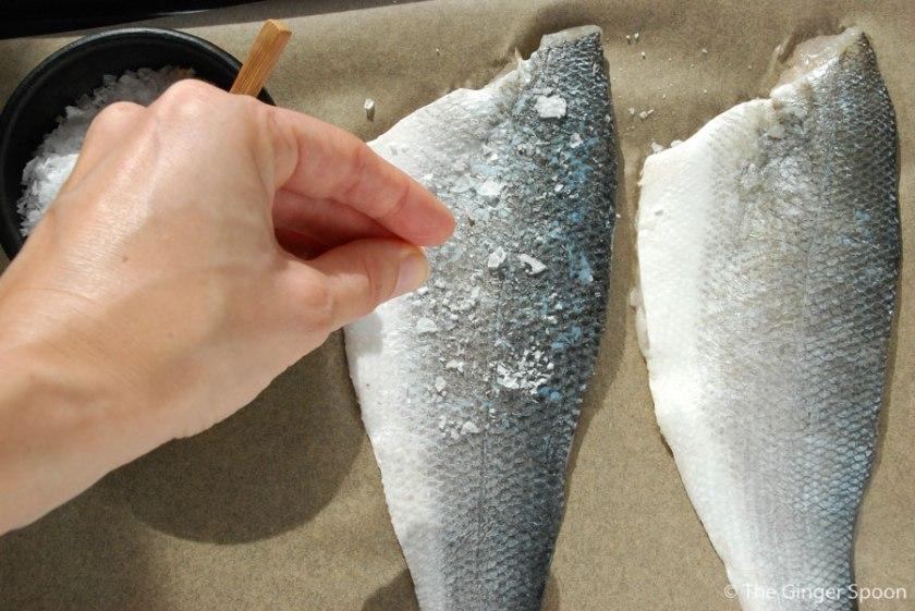 fishsalt